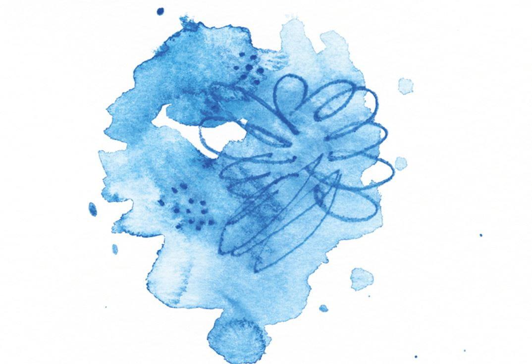 Les Techniques De Base Avec Les Crayons Aquarellables Albrecht Durer