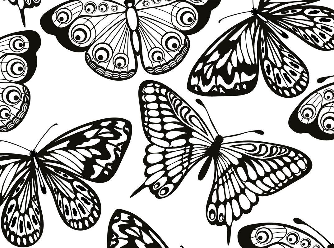 coloriage pour adultes motifs d'animaux